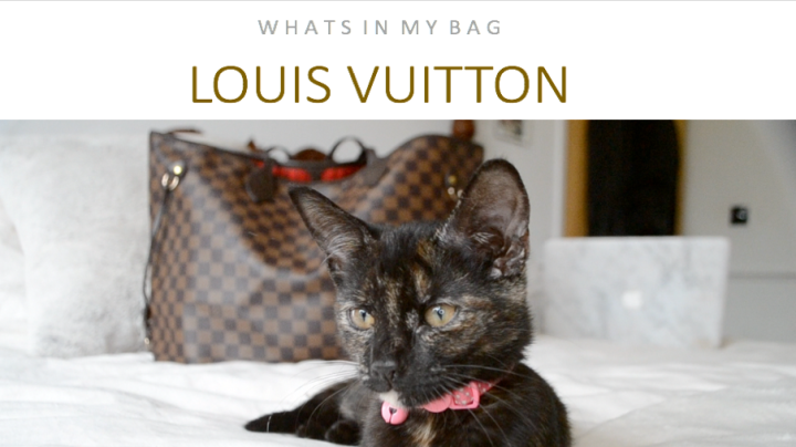 What's in my bag? Louis Vuitton Edition.